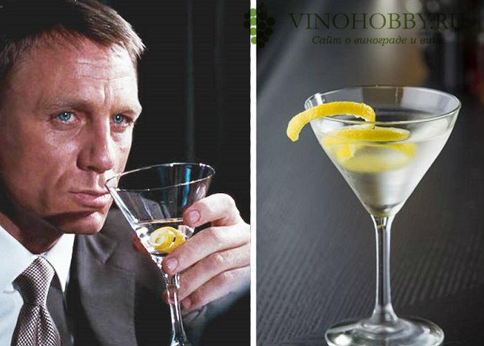 martini-s-vodkoj 3