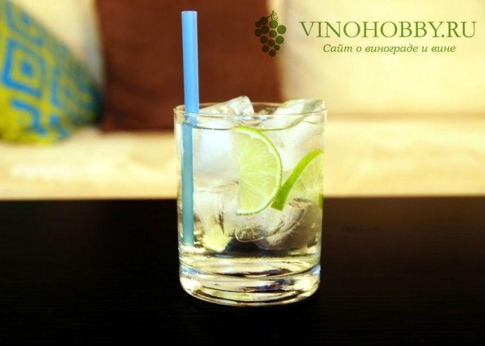 martini-s-vodkoj 8