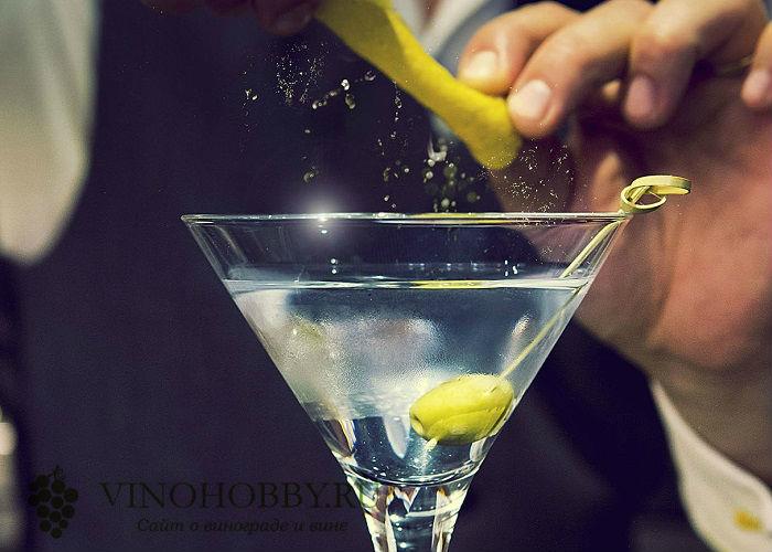 martini-s-vodkoj 9