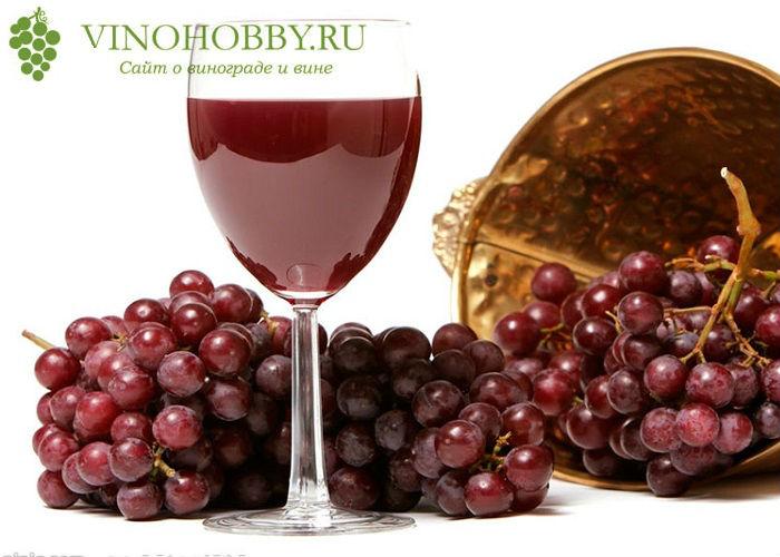 nalivka-iz-vinograda 4