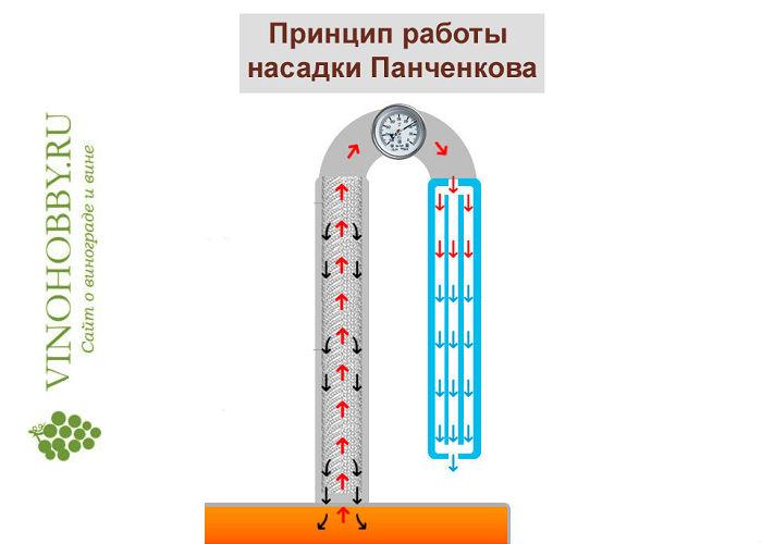 nasadka-panchenkova 3