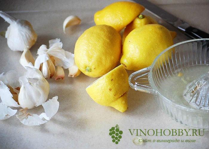 nastojka-na-limone 13