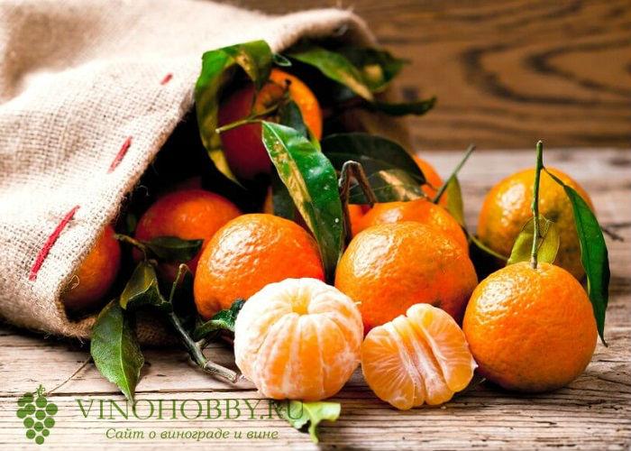 nastojka-na-mandarinovyh-korkah 3