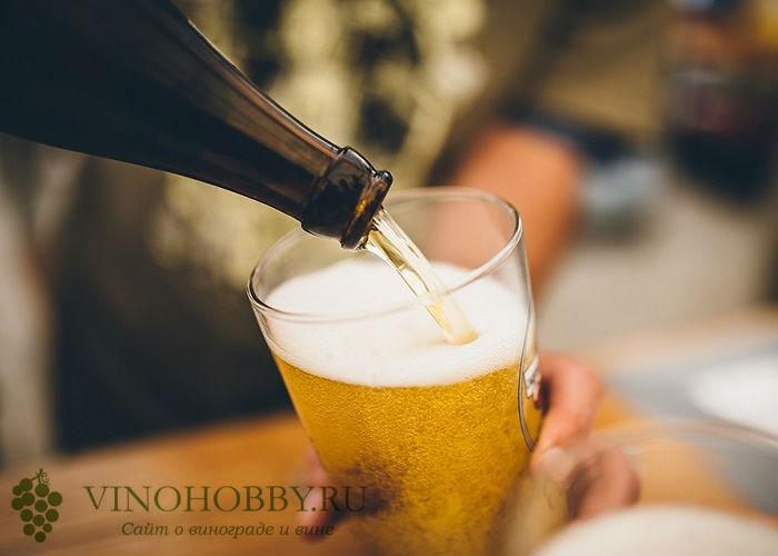 pivnoj-napitok 8