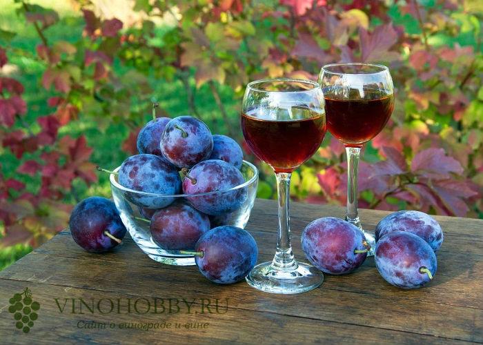 slivovoe-vino 10