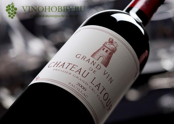 vino-bordo 11