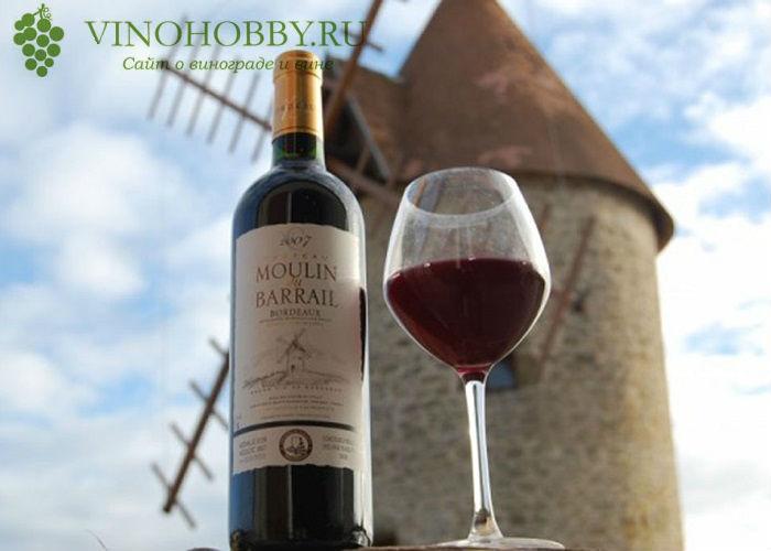 vino-bordo 2