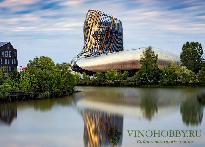 vino-bordo 5