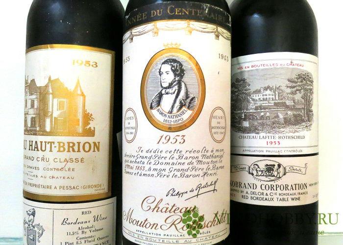 vino-bordo 9