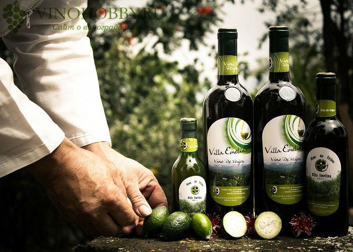 vino-iz-fejhoa 3