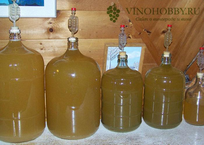 vino-iz-grush 12