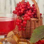 Вино из калины в домашних условиях: можно ли приготовить напиток из этой ягоды по традиционной винной технологии