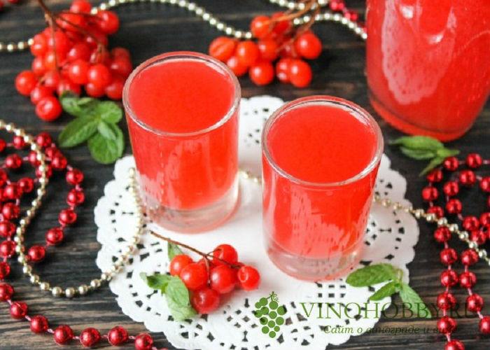 vino-iz-kaliny 15