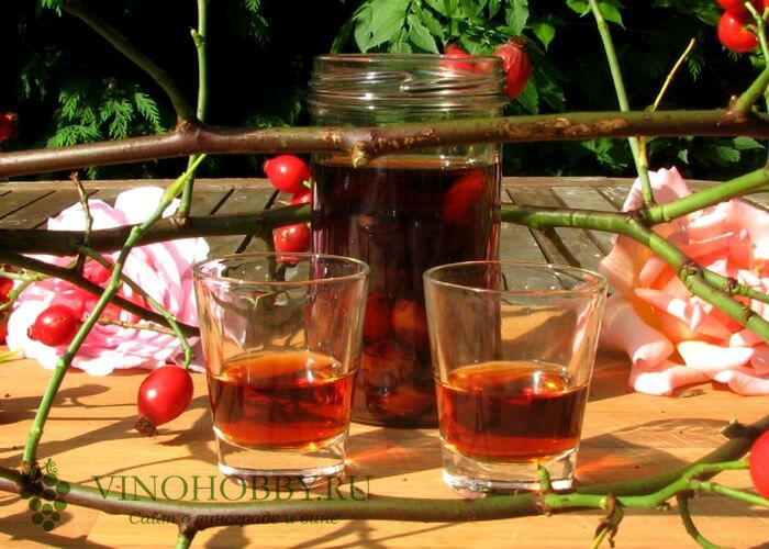 vino-iz-shipovnika 6