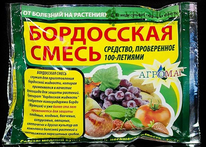 obrabotka-vinograda-mednym-kuporosom 9